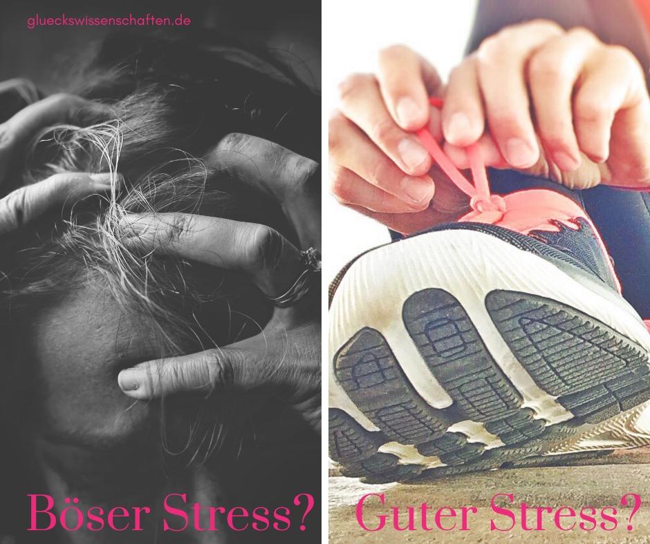 Böser Stress vs guter Stress