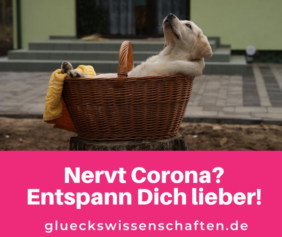 Glückswissenschaften- Nervt Corona - Entspann Dich lieber