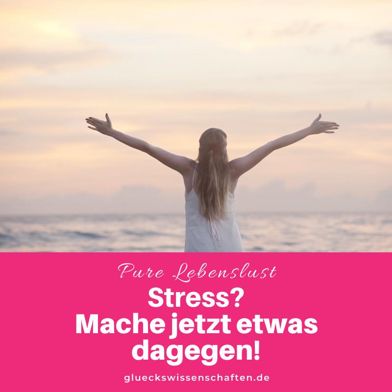 Glückswissenschaften - Pure Lebenslust - Stress - Mache jetzt etwas dagegen