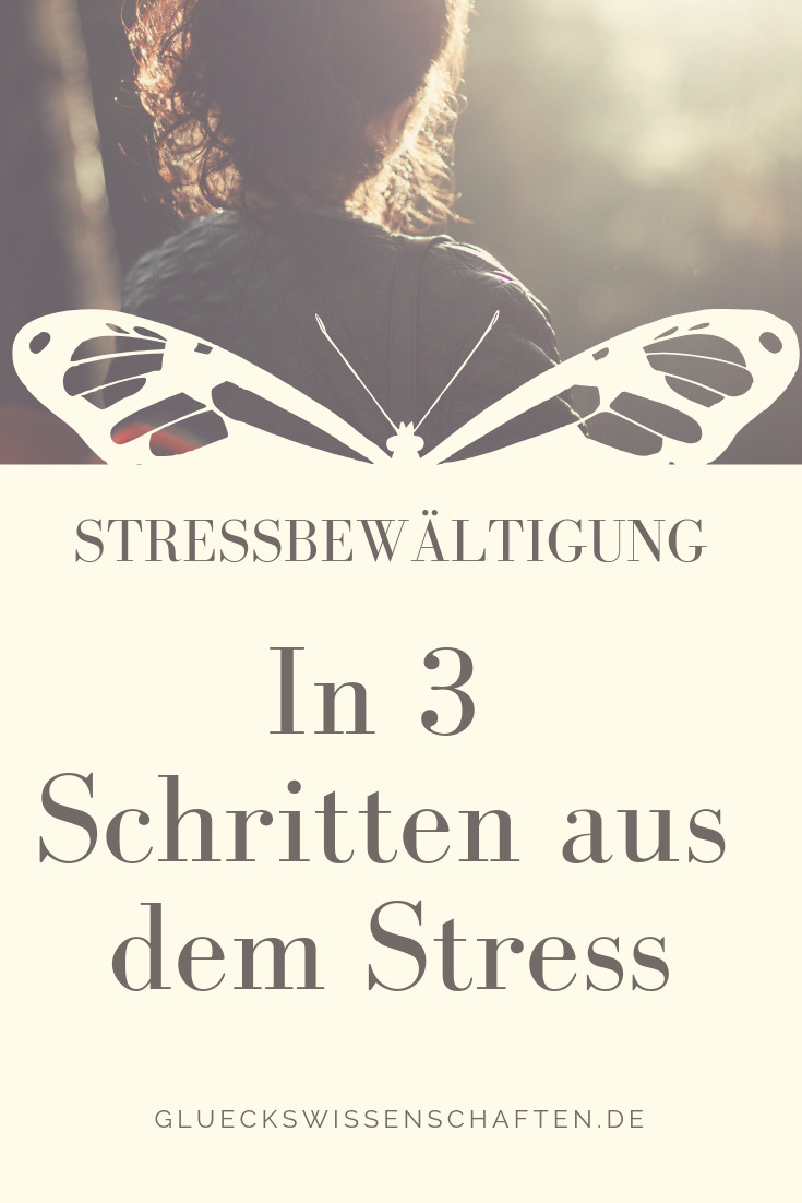 in 3 Schritten aus dem Stress