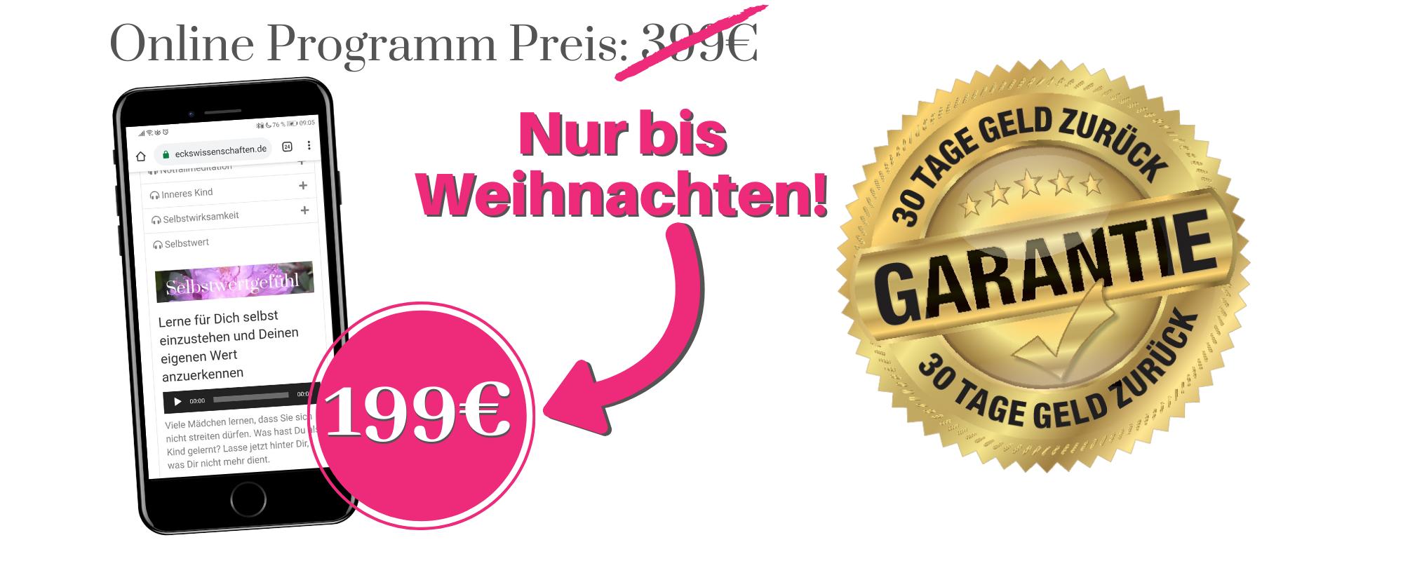 Online Programm Preis_ 399€ - Weihnachtspreis