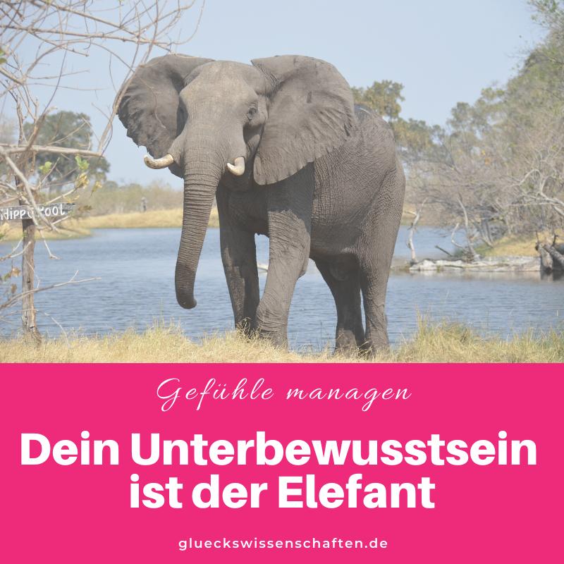 Glückswissenschaften - Anleitung Gefühle managen - Willst Du was erreichen- Dein Unterbewusstsein ist der Elefant