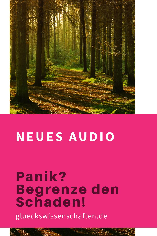 Glueckswissenschaften- Neues Audio für Dich - Panik - Begrenze den Schaden