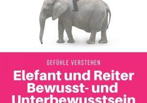 Elefant und Reiter Bewusst- und Unterbewusstsein