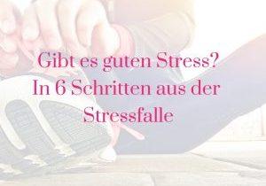 Gibt es guten Stress? In 6 Schritten aus der Stressfalle!